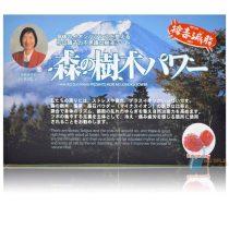 日本森之樹木貼片 天然漢方腳底貼布26+4枚
