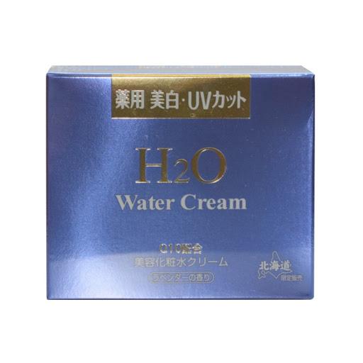 H2O Water Cream Q10